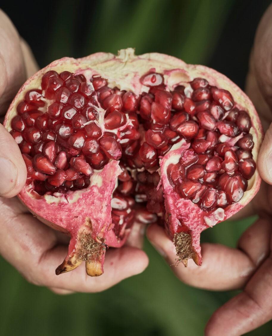 laziza fruit
